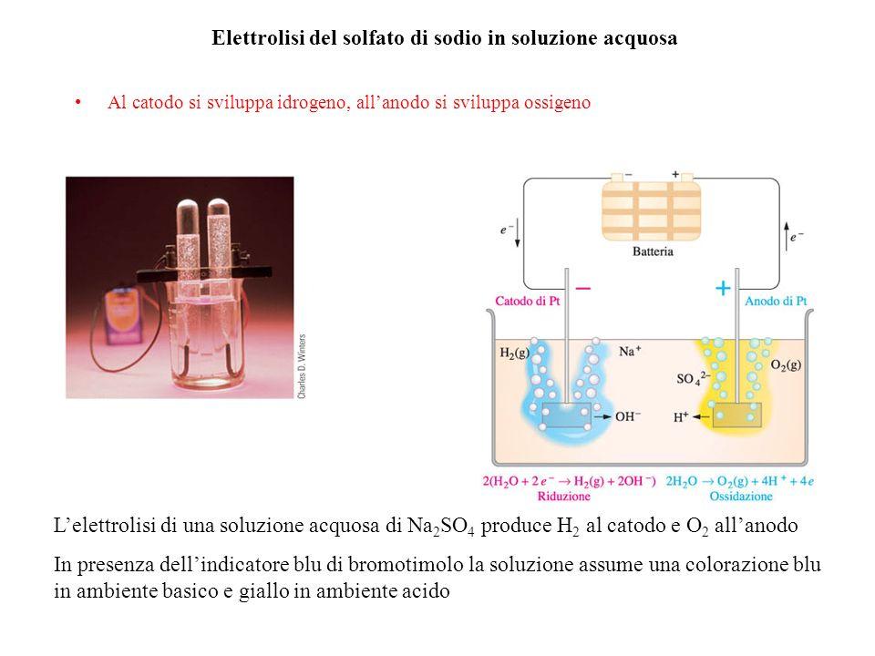 Elettrolisi del solfato di sodio in soluzione acquosa