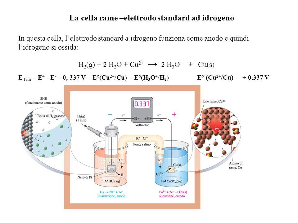 La cella rame –elettrodo standard ad idrogeno