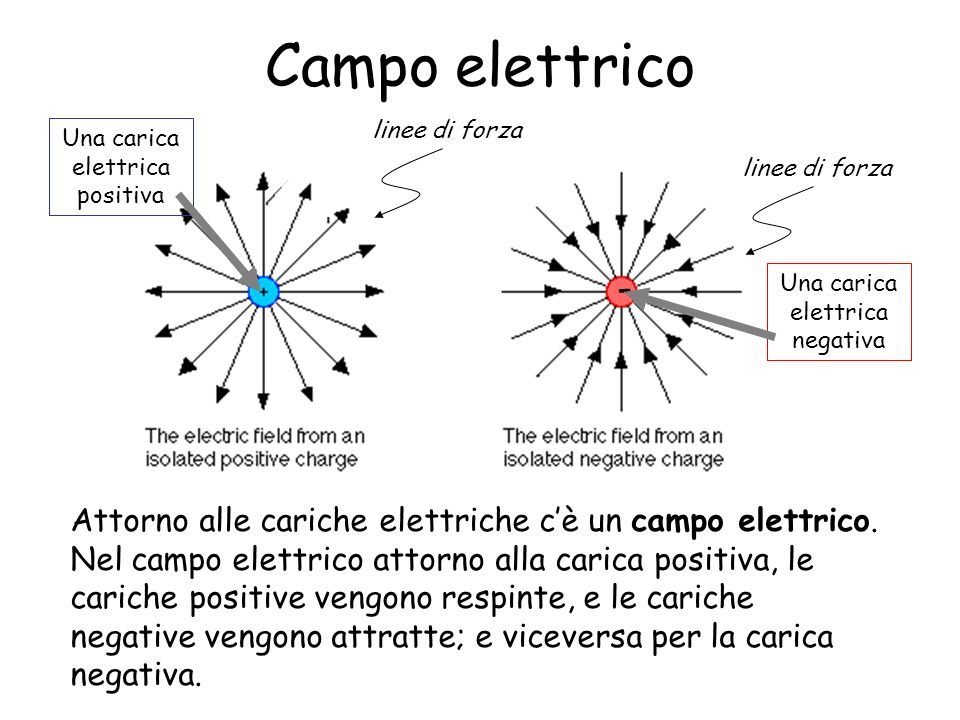 Campo elettrico - linee di forza. Una carica elettrica positiva. linee di forza. Una carica elettrica negativa.