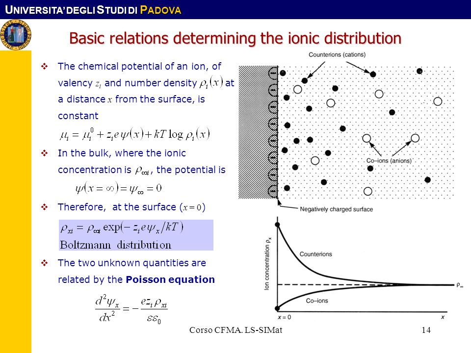 Basic relations determining the ionic distribution