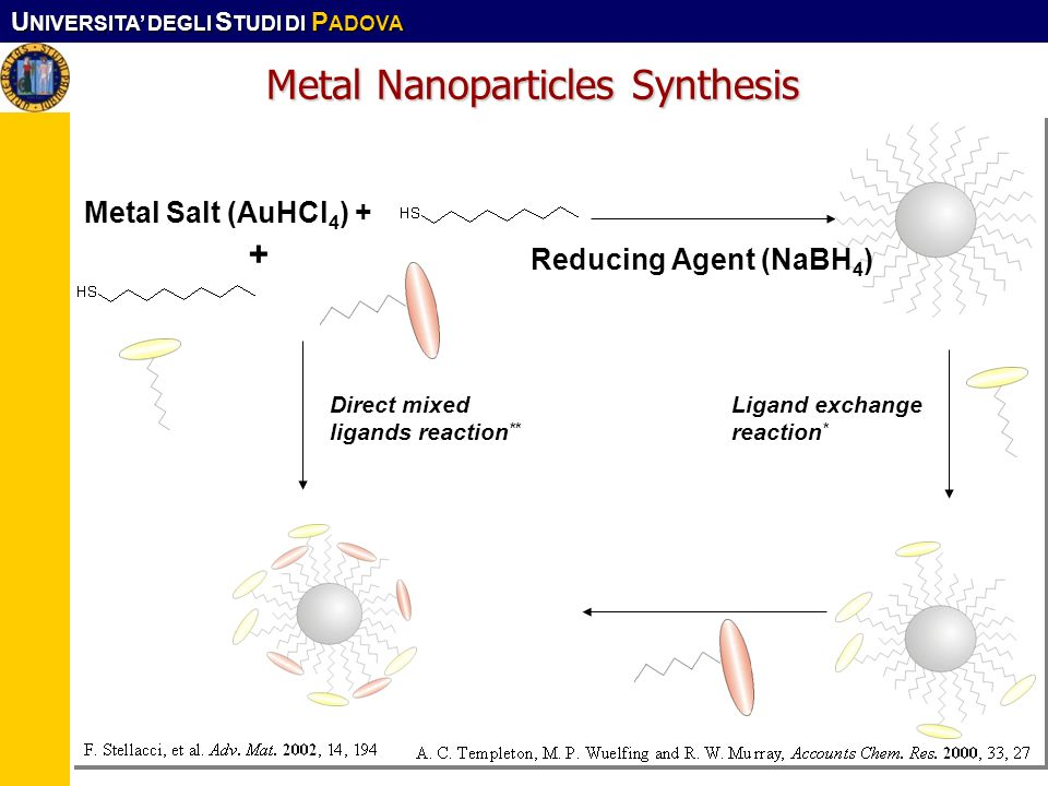 Metal Nanoparticles Synthesis