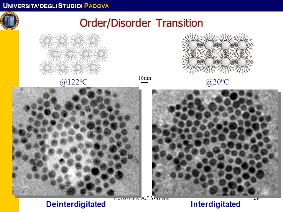 Order/Disorder Transition
