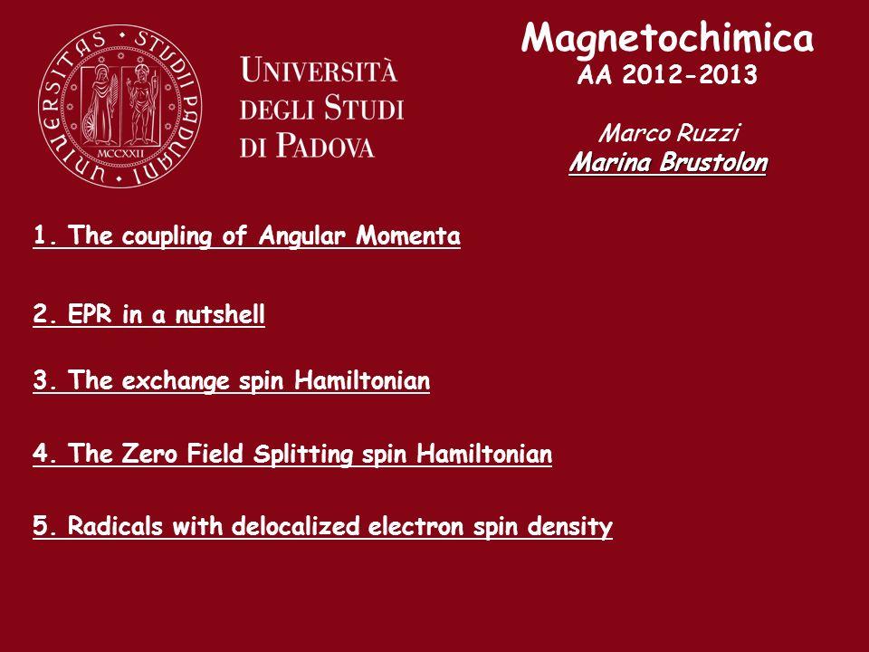 Magnetochimica AA 2012-2013 Marco Ruzzi Marina Brustolon