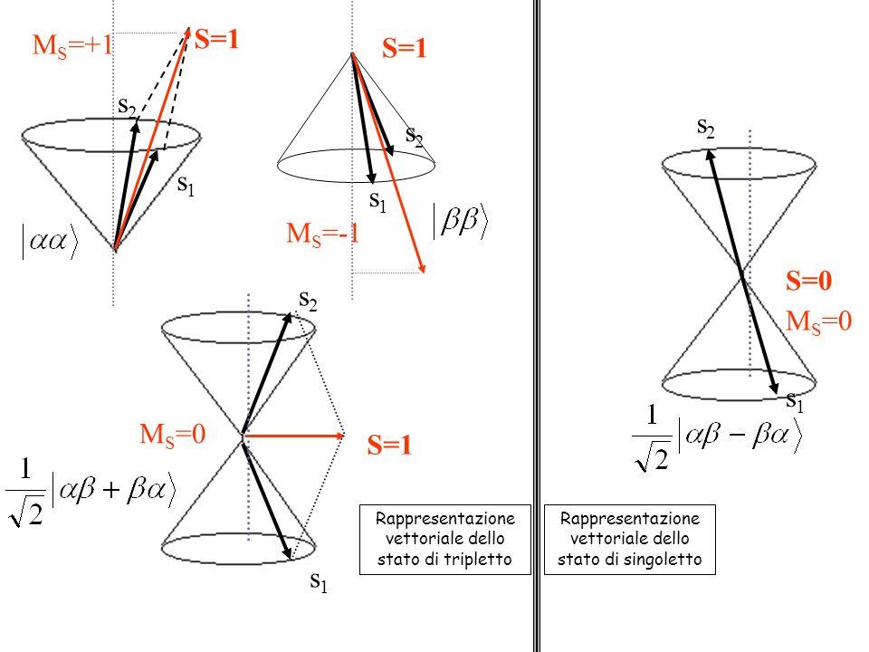 S=1 MS=+1 S=1 s2 s2 s2 s1 s1 MS=-1 S=0 s2 MS=0 s1 MS=0 S=1 s1