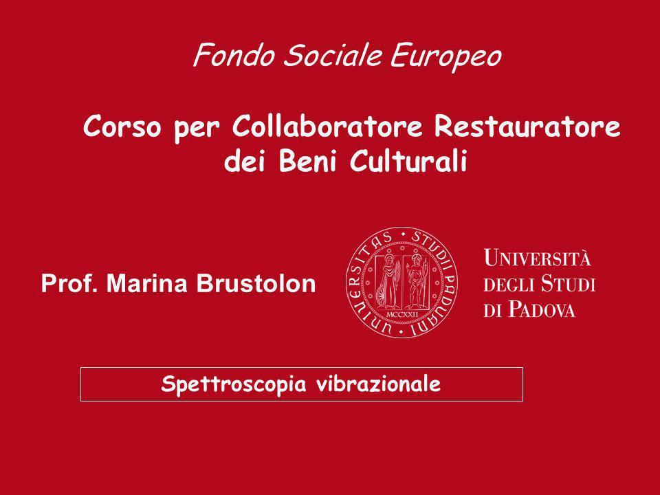 Prof. Emilio Mario Castellucci Prof. Marina Brustolon