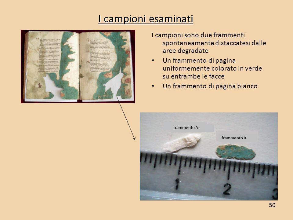 Prof. Emilio Mario Castellucci