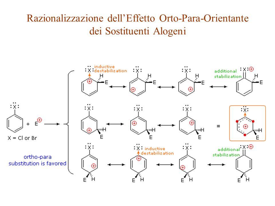 Razionalizzazione dell'Effetto Orto-Para-Orientante dei Sostituenti Alogeni