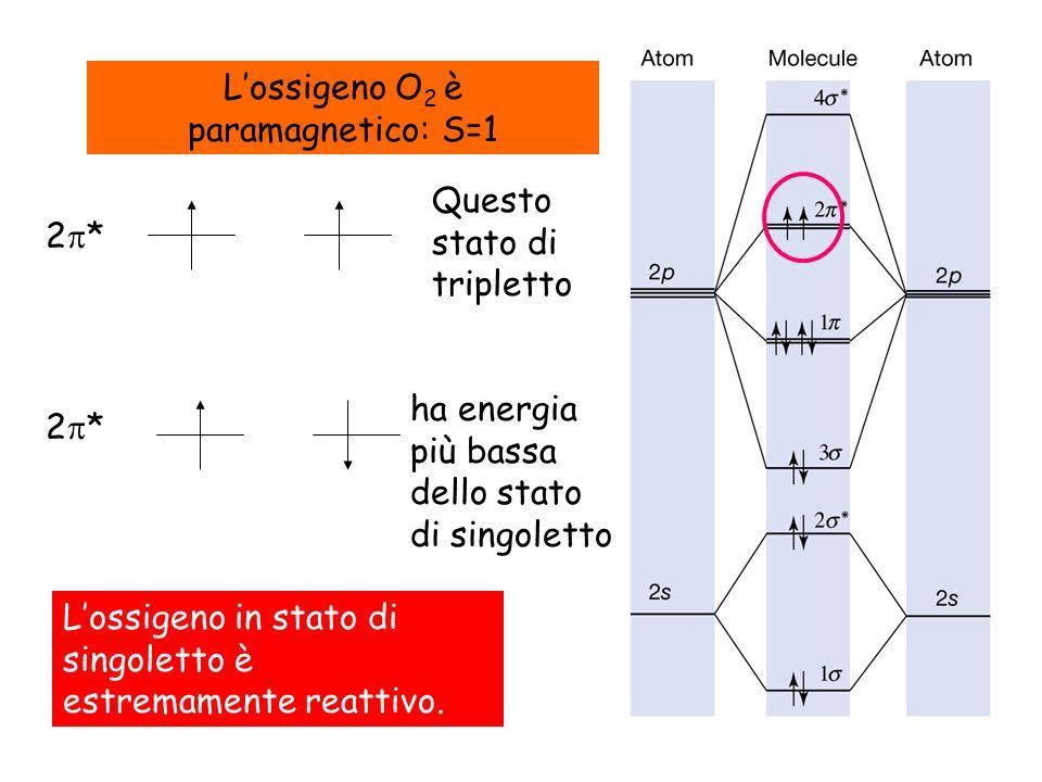 L'ossigeno O2 è paramagnetico: S=1