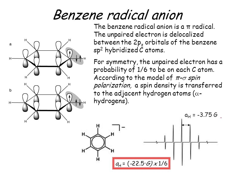 Benzene radical anion