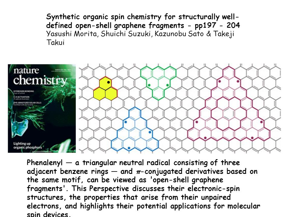 Synthetic organic spin chemistry for structurally well-defined open-shell graphene fragments - pp197 - 204