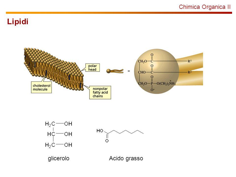 Chimica Organica II Lipidi glicerolo Acido grasso