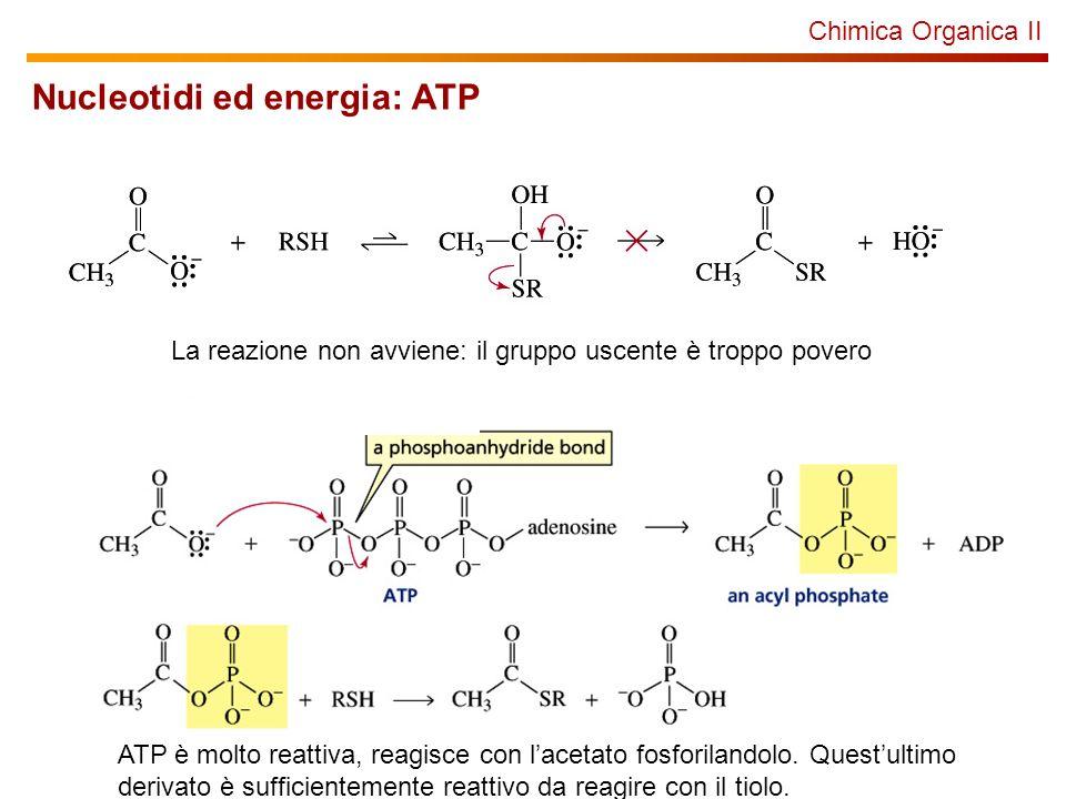 Nucleotidi ed energia: ATP