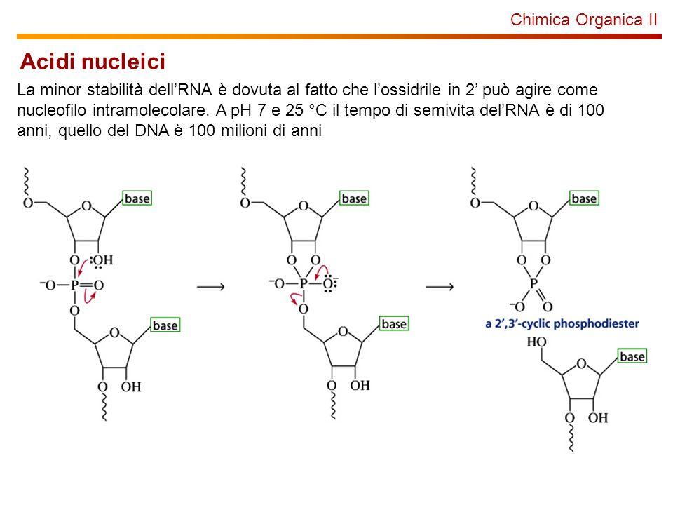 Acidi nucleici Chimica Organica II