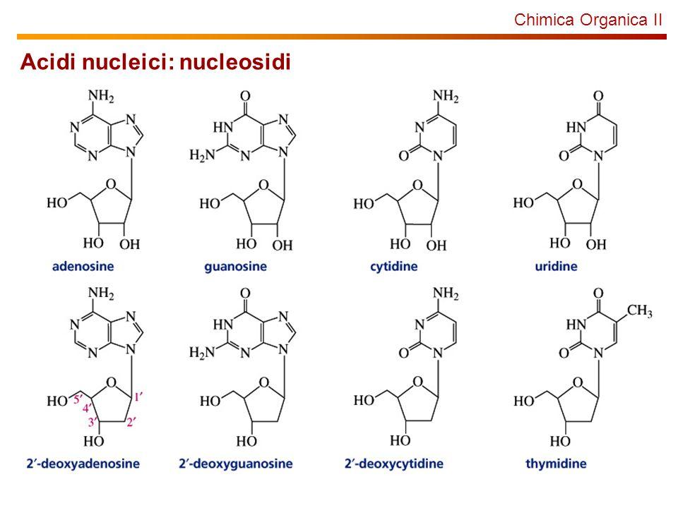 Acidi nucleici: nucleosidi