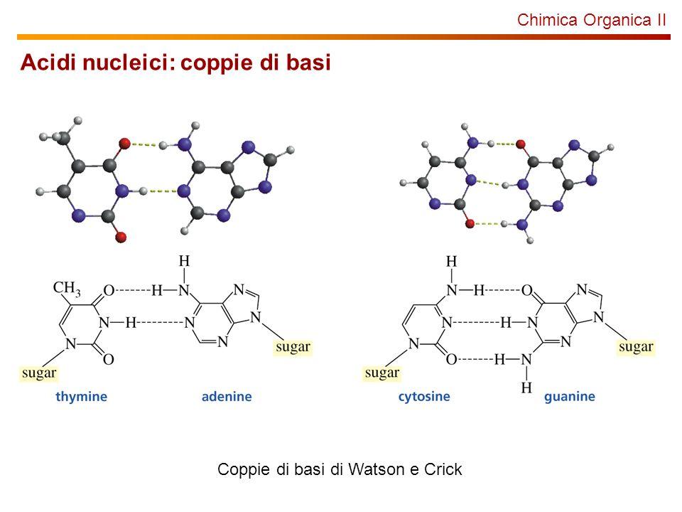 Acidi nucleici: coppie di basi