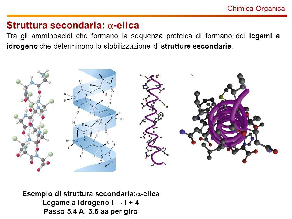 Esempio di struttura secondaria:a-elica