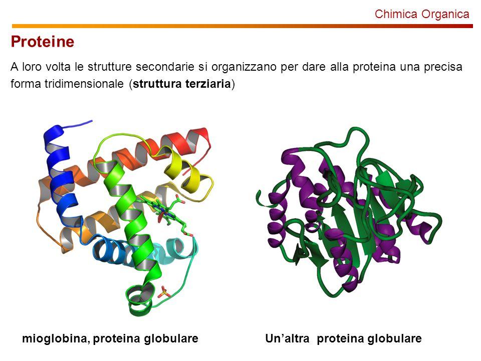 Proteine Chimica Organica