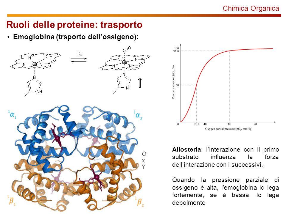 Ruoli delle proteine: trasporto
