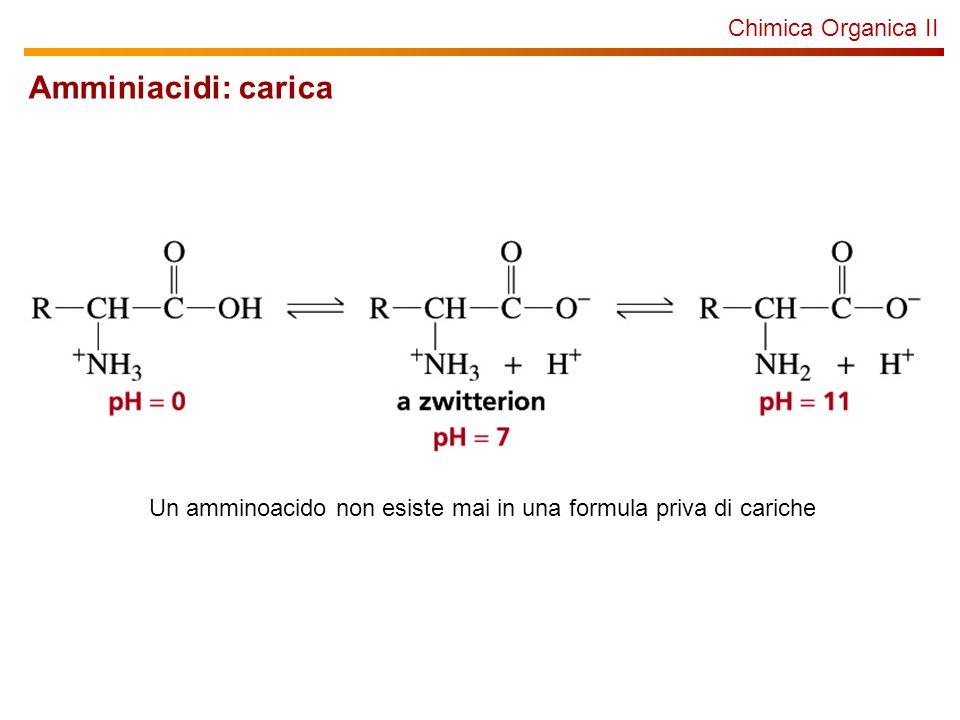 Amminiacidi: carica Chimica Organica II