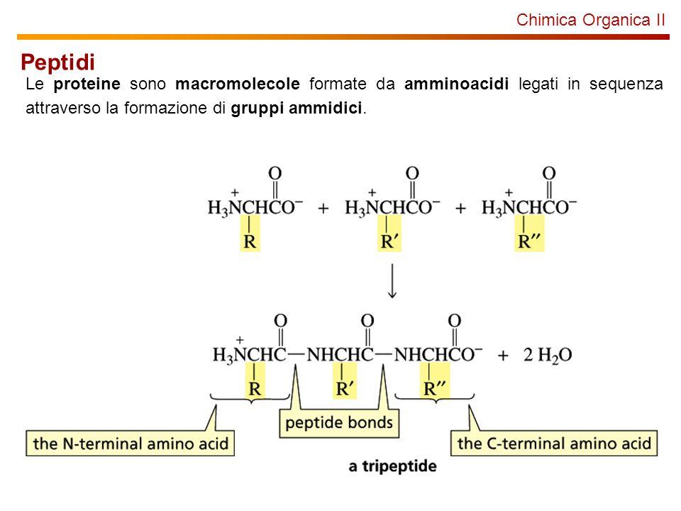 Peptidi Chimica Organica II