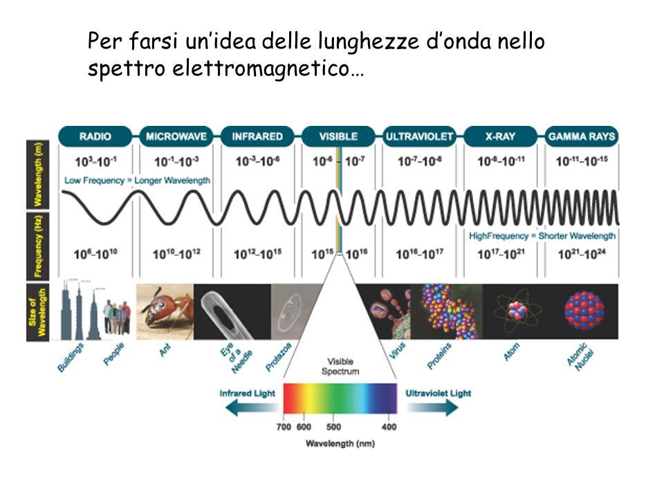 Per farsi un'idea delle lunghezze d'onda nello spettro elettromagnetico…