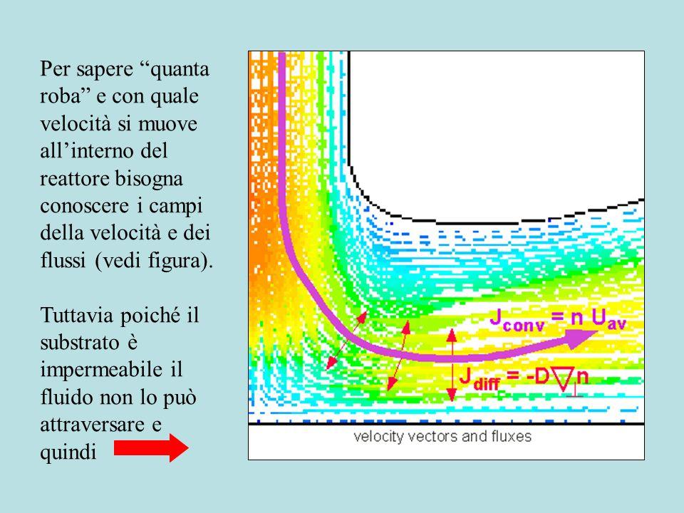 Per sapere quanta roba e con quale velocità si muove all'interno del reattore bisogna conoscere i campi della velocità e dei flussi (vedi figura).
