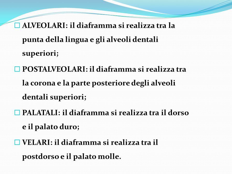 ALVEOLARI: il diaframma si realizza tra la punta della lingua e gli alveoli dentali superiori;