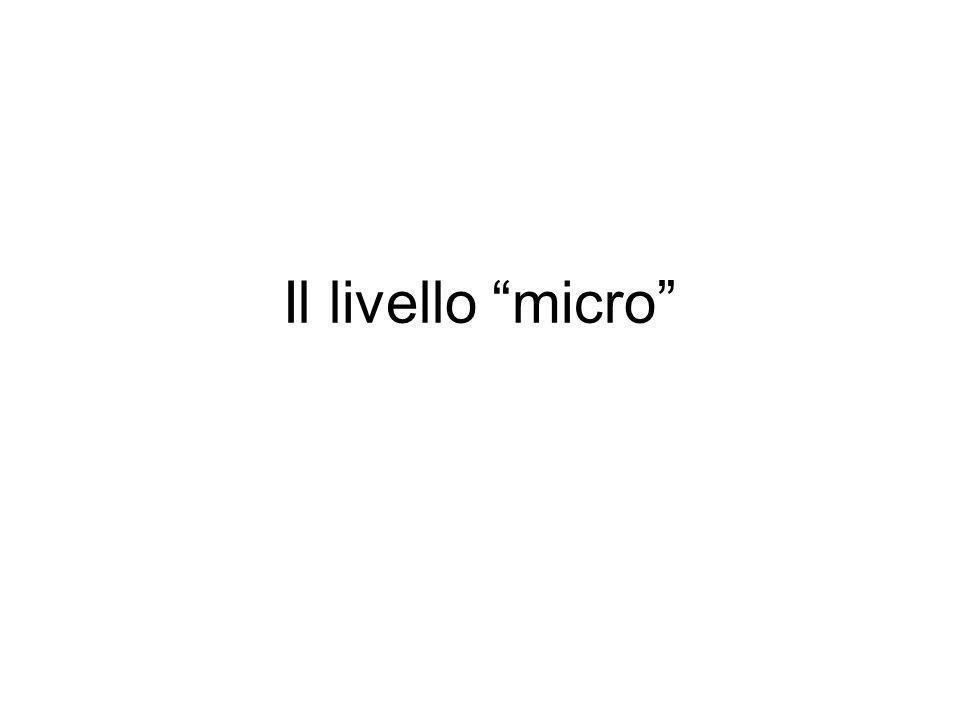 Il livello micro