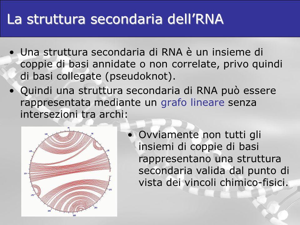 La struttura secondaria dell'RNA