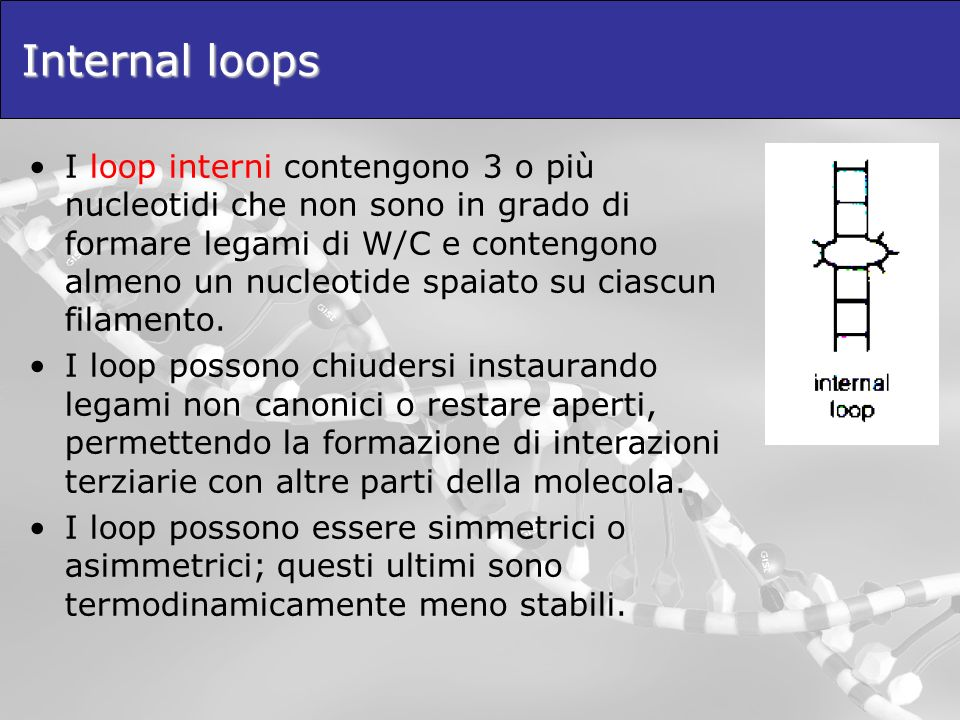 Internal loops