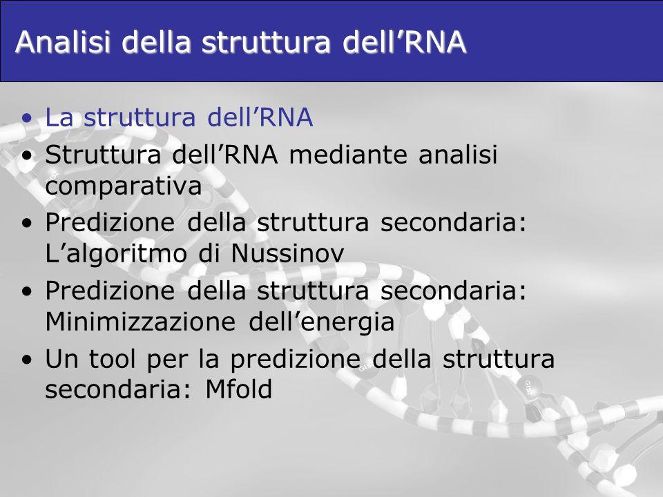 Analisi della struttura dell'RNA
