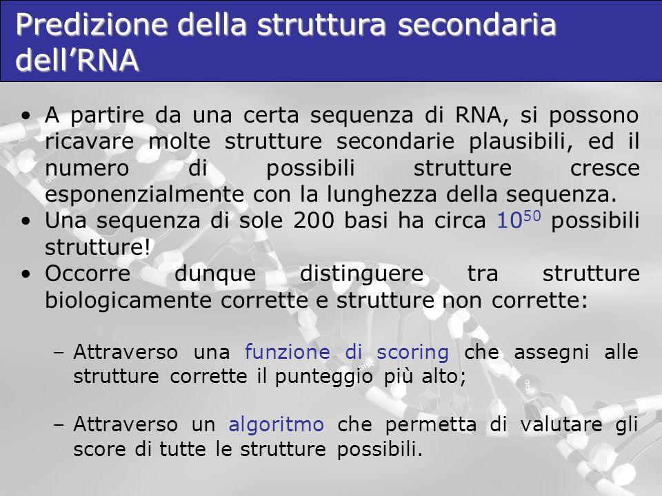 Predizione della struttura secondaria dell'RNA
