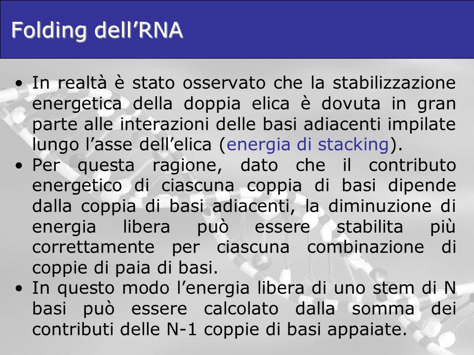Folding dell'RNA