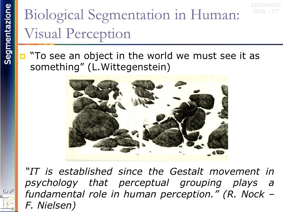 Biological Segmentation in Human: Visual Perception