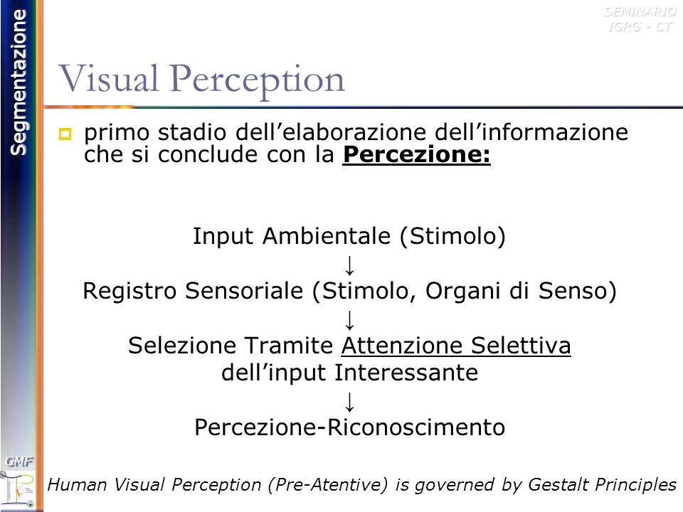 Visual Perception primo stadio dell'elaborazione dell'informazione che si conclude con la Percezione: