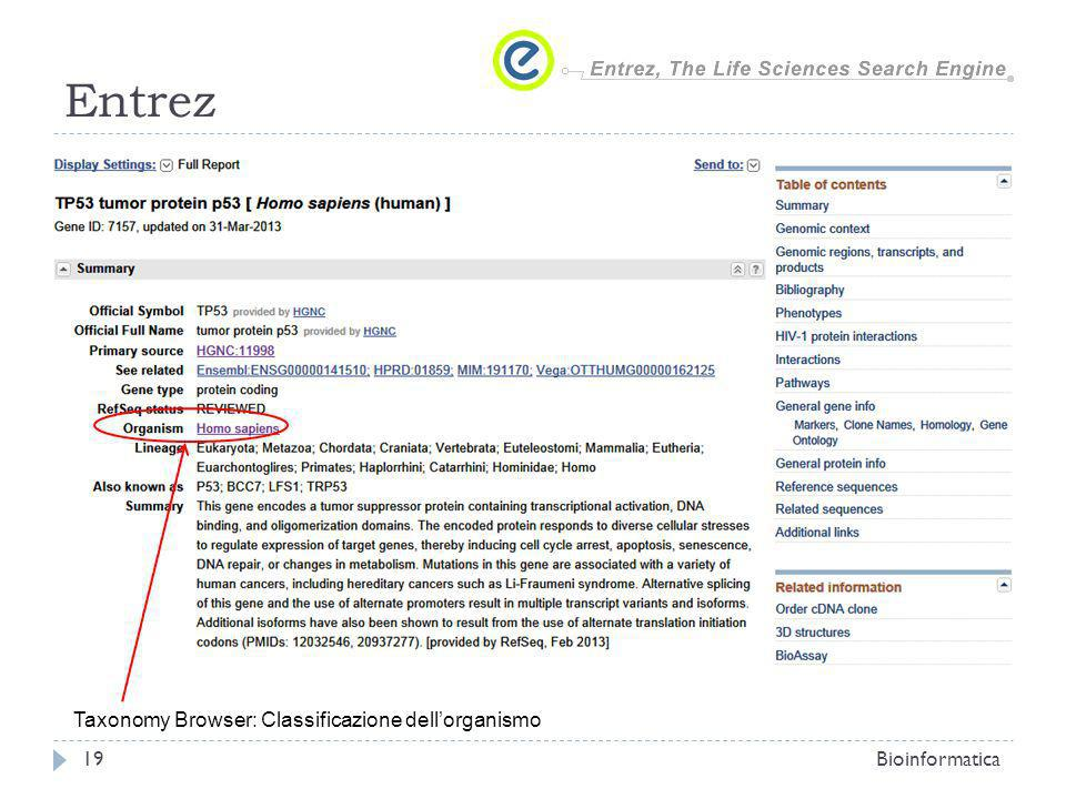 Entrez Taxonomy Browser: Classificazione dell'organismo Bioinformatica
