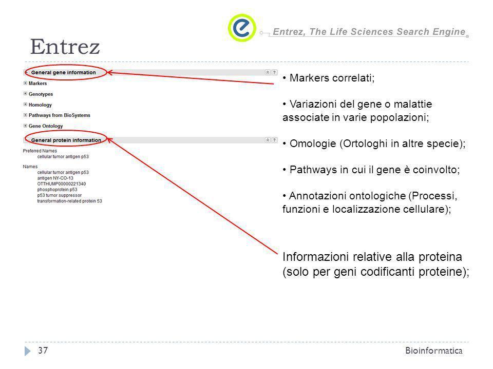 Entrez Informazioni relative alla proteina