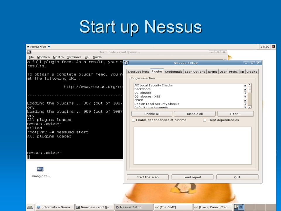 Start up Nessus