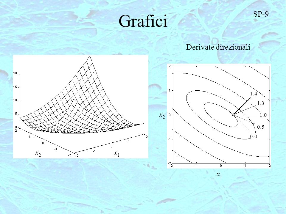 Grafici SP-9 Derivate direzionali 1.4 1.3 x2 1.0 0.5 0.0 x2 x1 x1