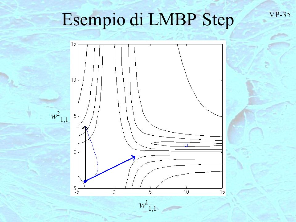 Esempio di LMBP Step VP-35 w21,1 w11,1