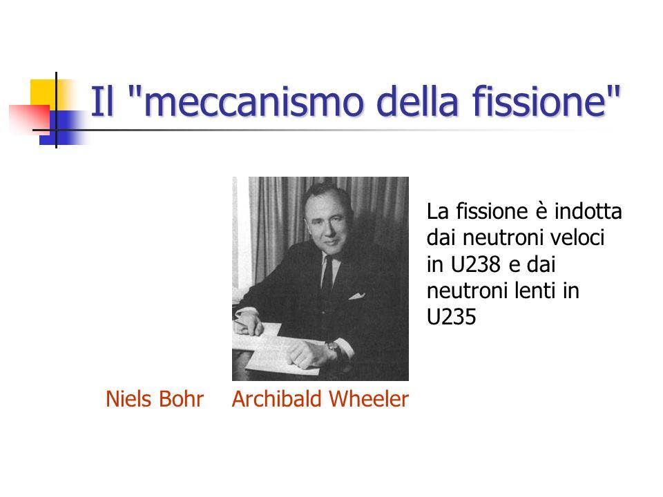 Il meccanismo della fissione