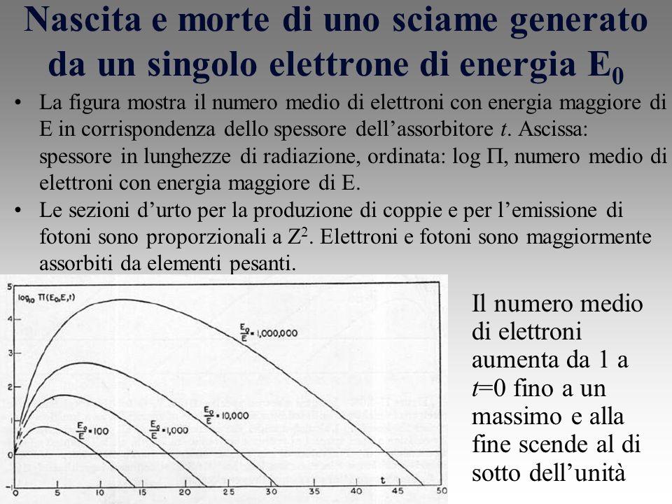 Nascita e morte di uno sciame generato da un singolo elettrone di energia E0
