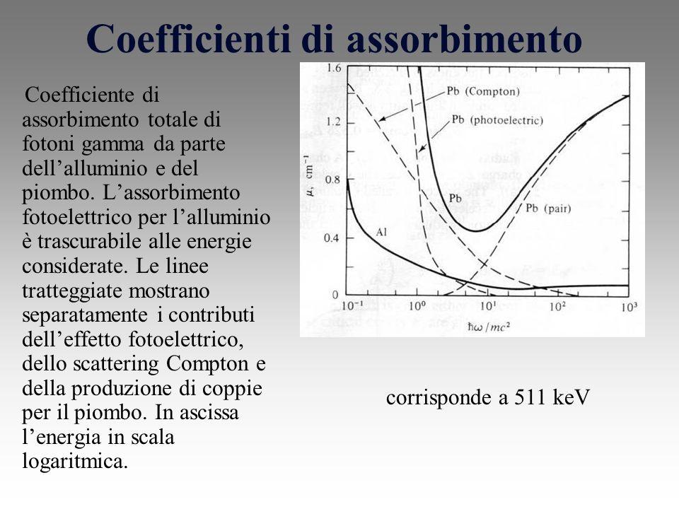 Coefficienti di assorbimento