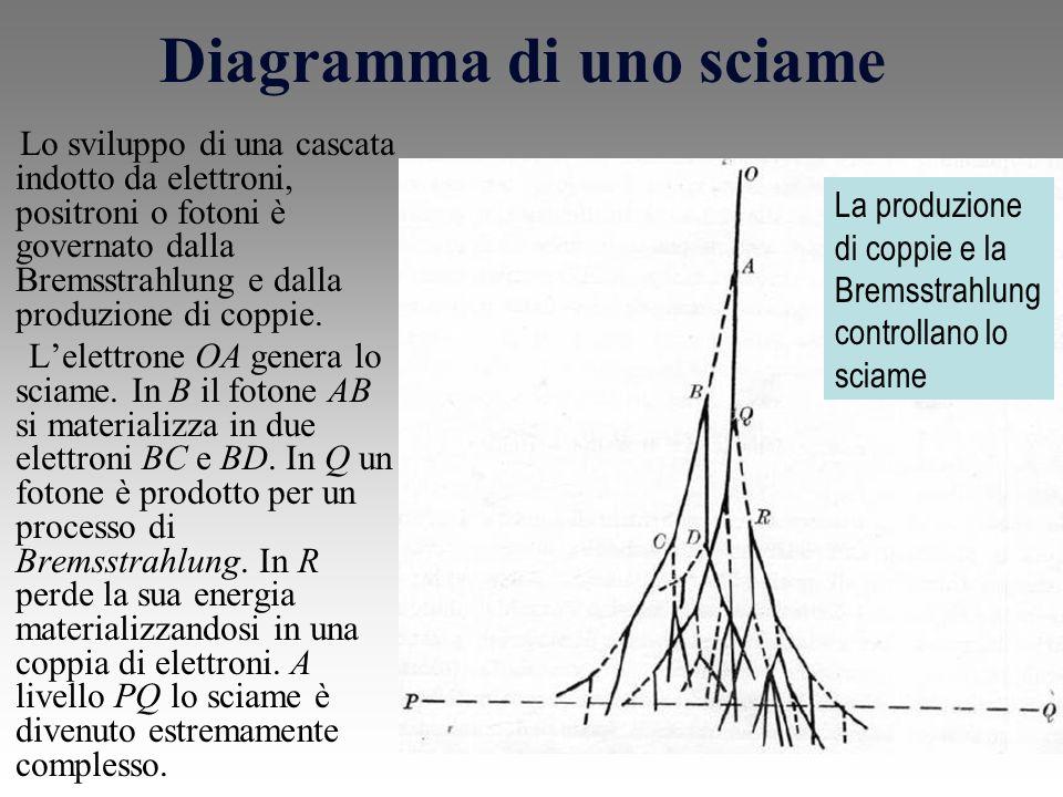 Diagramma di uno sciame