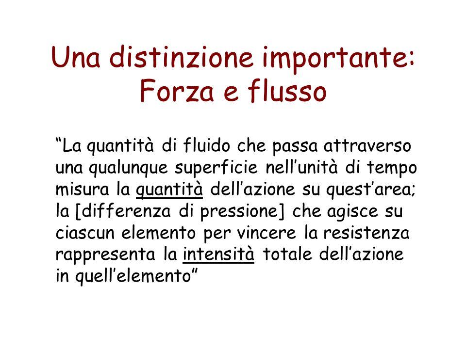 Una distinzione importante: Forza e flusso