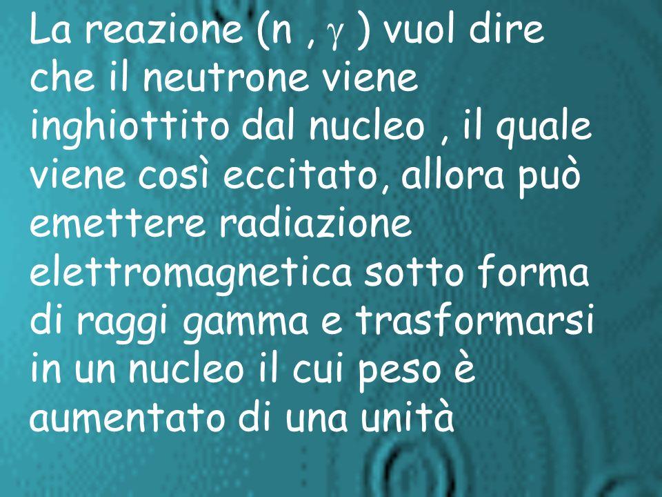 La reazione (n , g ) vuol dire che il neutrone viene inghiottito dal nucleo , il quale viene così eccitato, allora può emettere radiazione elettromagnetica sotto forma di raggi gamma e trasformarsi in un nucleo il cui peso è aumentato di una unità