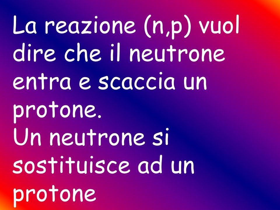 La reazione (n,p) vuol dire che il neutrone entra e scaccia un protone