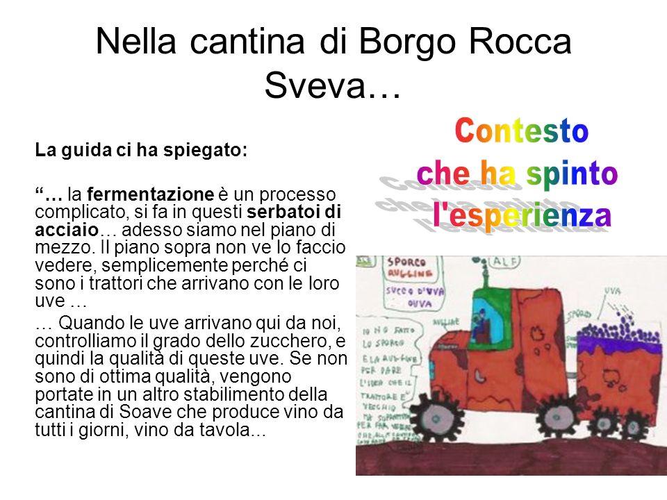 Nella cantina di Borgo Rocca Sveva…