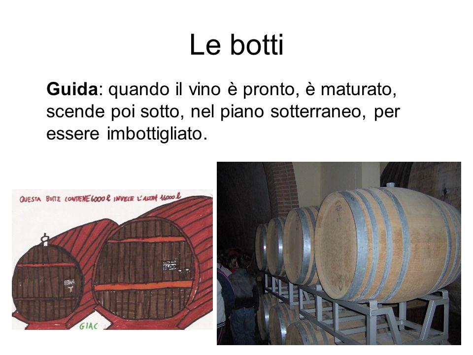 Le botti Guida: quando il vino è pronto, è maturato, scende poi sotto, nel piano sotterraneo, per essere imbottigliato.