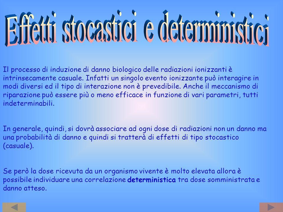 Effetti stocastici e deterministici
